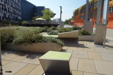 Architects create 83 seating places in the campus.